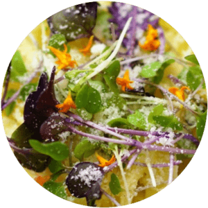 Microgreens as garnishes